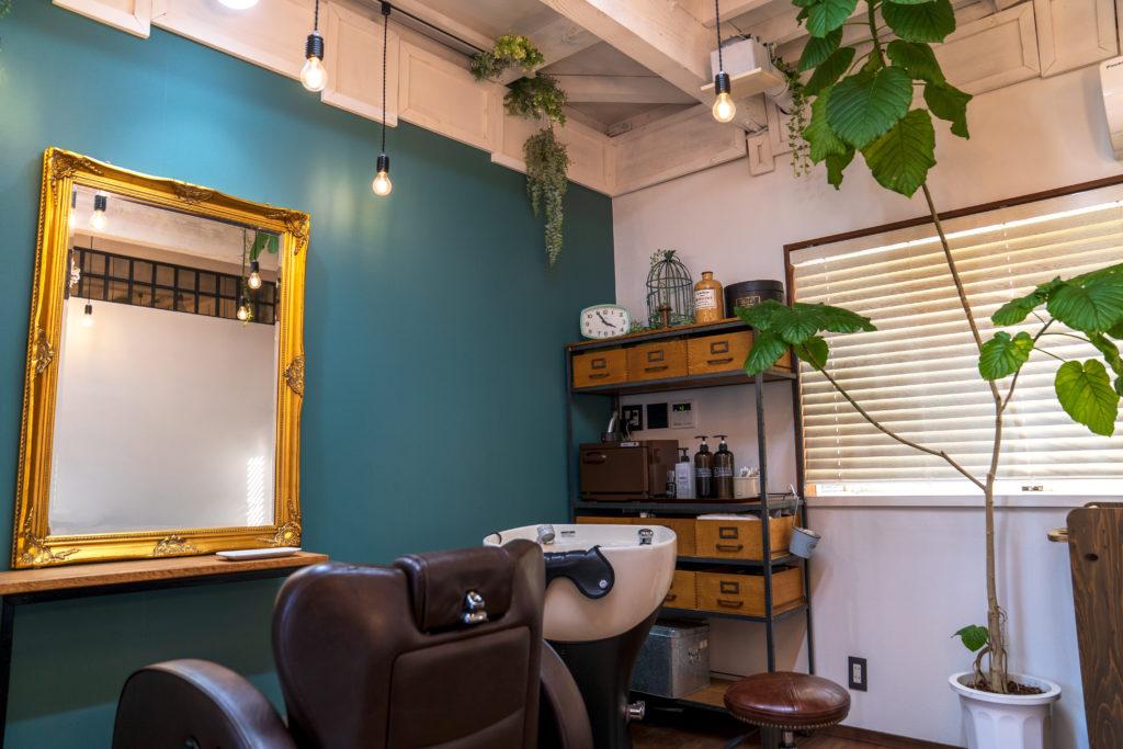 グリーンの壁にゴールドの枠の鏡、ブラインドのしまった窓の前に大きな観葉植物があり、ブラウンの皮製のカット台があるオリーブネオの店内の様子